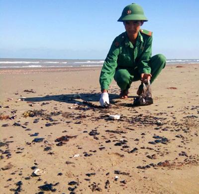 Dầu vón cục trải dài 9 km bờ biển Bến Tre - ảnh 1