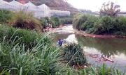 Hai thanh niên tử vong do sử dụng điện bắt cá