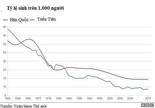 Dù kinh tế kém phát triển, điều kiện vật chất thiếu thốn hơn, nhưng Triều Tiên (đỏ) lại có tỉ lệ sinh cao hơn Hàn Quốc (xanh). Đồ họa: BBC.