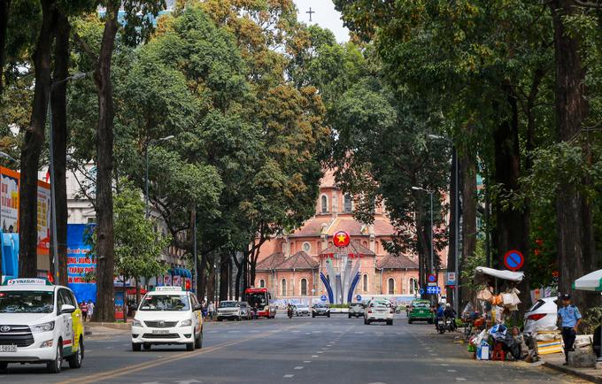 Sài Gòn với mùa sao đen hạ cánh ngập vàng vỉa hè