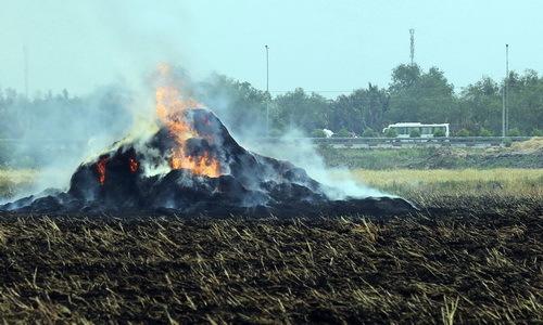 Đồng Nai yêu cầu người đốt đồng bên cao tốc phải báo trước