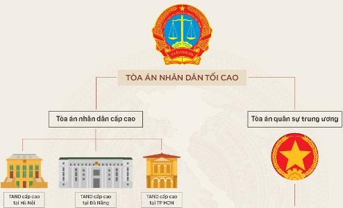Minh họa tổ chức Tòa án ở Việt Nam. Thiết kế: Việt Chung.