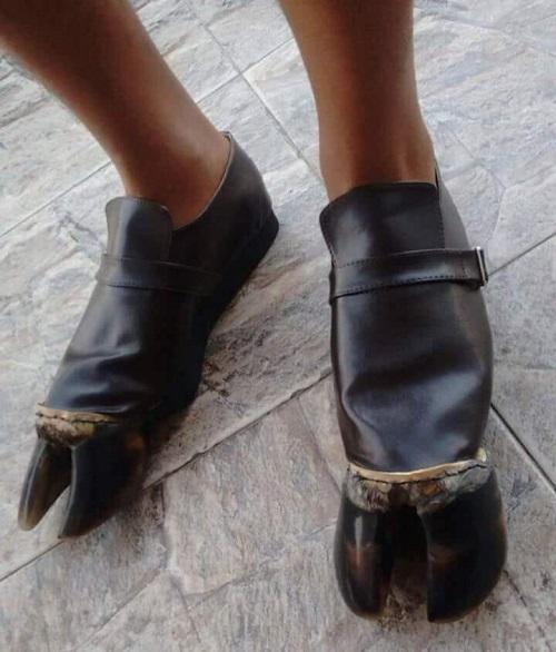 Giày móng ngựa siêu bền và thời trang.