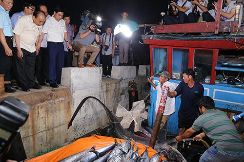 Bộ Y tế công bố hải sản bốn tỉnh miền Trung bảo đảm an toàn - 1