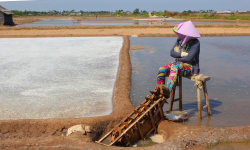 1.500ha muối bị mưa trái mùa, nông dân thua lỗ 3,5 tỷ đồng. Ảnh: Hoàng Nam