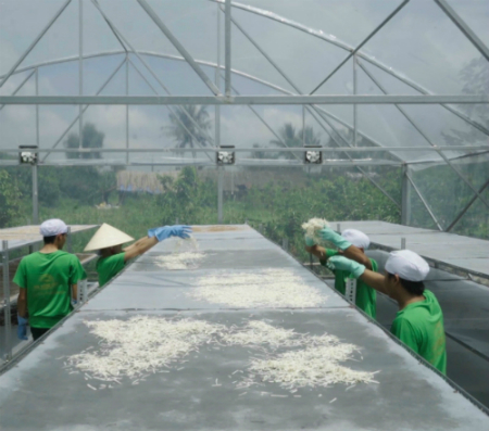 8x thu 250 triệu mỗi tháng nhờ bán trà mãng cầu xiêm