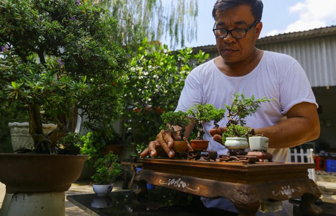 Bonsai tí hon giá chục triệu đồng ở Sài Gòn
