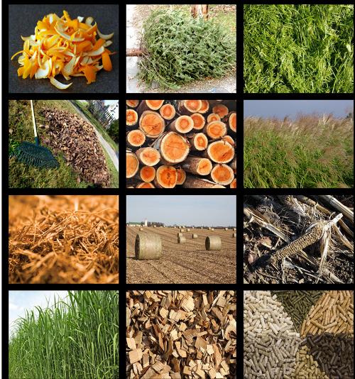 Các phụ phẩm nông nghiệp sẽ là nguyên liệu đầu vào của công nghệ xử lý rác.