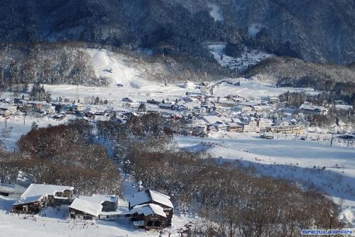Làng Otari ngập trong tuyết trắng vào mùa đông. Ảnh:Tsugaike Kogen.