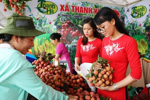 Vải thiều xã Thanh Khê, huyện Thanh Hà được giới thiệu và bán cho khách tại lễ hội vải Thanh Hà 2008. Ảnh: Giang Chinh