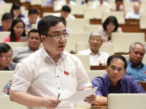 Đại biểu Đặng Xuân Phương. Ảnh: Hoàng Phong.