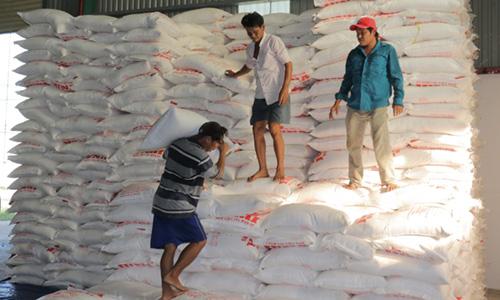 Nông dân bán mía phải nhận đường vì nhà máy nợ hơn 100 tỷ đồng