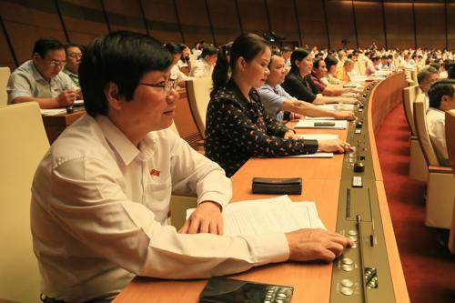 Các đại biểu bấm nút thông qua Luật Tố cáo (sửa đổi) sáng 12/6. Ảnh: Hoàng Phong.