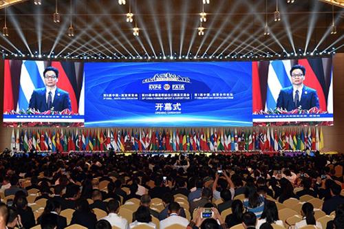 Phó thủ tướng Vũ Đức Đam dự lễ khai mạc hội chợ Trung Quốc - Nam Á - ảnh 2