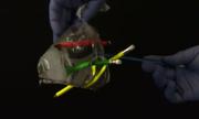 Tại sao nước không tràn khi đâm bút chì xuyên qua túi?