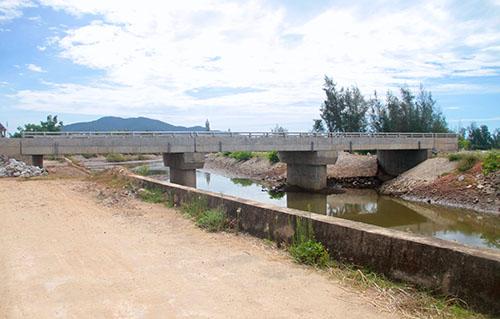 Cầu Bà Vường bắc qua kênh C2. Ảnh: Đức Hùng