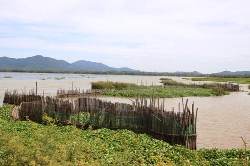 Đầm Trà Ổ, nơi cung cấp nguồn nước và mưu sinh của người dân xã Mỹ Châu. Ảnh: Hạ Lý.