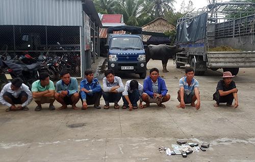 Gần chục người tham gia chọi trâu ăn tiền bị cảnh sát bắt giữ. Ảnh: Thế Phong