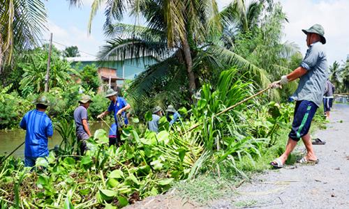 Đoàn viên tham gia chiến dịch vớt lục bình. Ảnh: Hoàng Nam