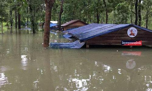 NÆ°á»c lÅ© từ Lào tràn sang nhấn chìm má»t chá»t cảnh sát á» tá»nh Stung Treng, Campuchia. Ảnh: Bá» Tài nguyên nÆ°á»c và Khí tượng Campuchia.