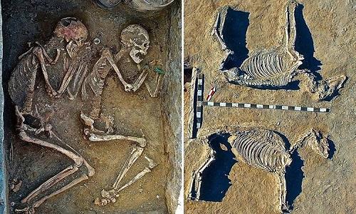 Hài cốt của đôi tình nhân và hai con ngựa chôn theo. Ảnh:Igor Kukushkin.