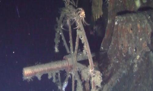 Một phần xác tàu chiến Dimitri Donskoii chìm dưới đáy biển. Ảnh: Shinil Group.