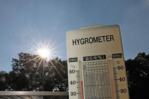 Nhiệt độ ngoài trời hôm 24/7 lên tới hơn 40 độ C tại Yeongcheon, thị trấn thuộc tỉnh North Gyeongsang, đông nam Hàn Quốc. Ảnh: Yonhap.