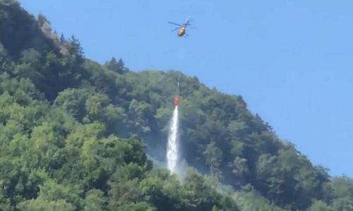 Trực thăng dập lửa sau vụ tai nạn máy bay làm 4 người thiệt mạng hôm 4/8. Ảnh: Reuters.
