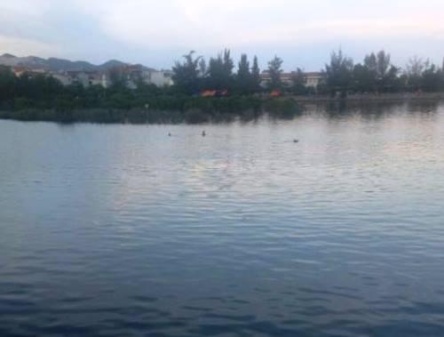 Hồ nước nơi hai ông cháu gặp nạn. Ảnh: B.M