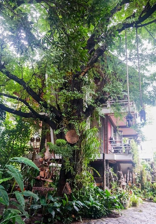 caphetaynguyen 11 2 1534329463 600x0 - Quán cà phê theo phong cách nhà mồ ở Kon Tum