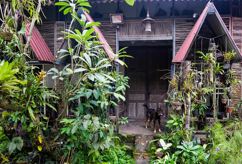 caphetaynguyen 24 1534331794 r 680x0 - Quán cà phê theo phong cách nhà mồ ở Kon Tum