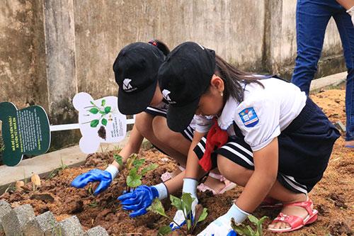 Học sinh Trường tiểu họcPhụng Thượng tạo vườn sinh học với 32 loại cây thảo dược. Ảnh: Tổ chức động vật châu Á.