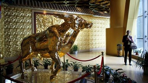 Con trâu vàng nặng một tấn trong khách sạn ở trung tâm thôn Hoa Tây.