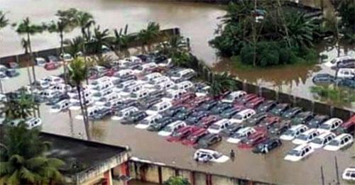 Hàng chục nghìn ôtô ngập nước ở Ấn Độ, thiệt hại 142 triệu USD - 3