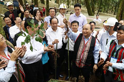 Thủ tướng và lãnh đạo các bộ ngành tìm hiểu cây sâm Ngọc Linh. Ảnh: Ngọc Thành.