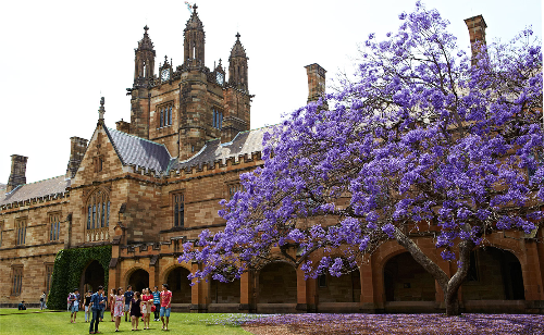 Khuôn viên trường đại học Sydney.
