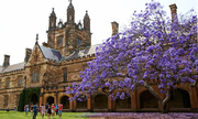 Vào thẳng UniSyd Australia khi học tại 24 trường chuyên Việt Nam