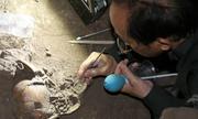 Hành trình xác định sọ người 7.000 năm ở Đăk Nông