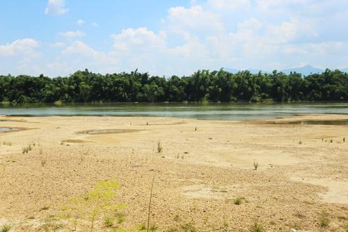 Những rặng tre được người dân huyện Đại Lộc sống ven sông trồng để bảo vệ làng. Ảnh: Đắc Thành.