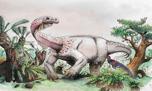 Hình ảnh phục dựng loài khủng long Ledumahadi mafube. Ảnh: AFP.