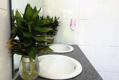Nhà vệ sinh được đầu tư xã hội hóa ở một trường học Quảng Ninh. Ảnh: Minh Cương