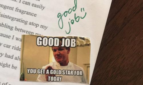 Cô giáo Mỹ được khen ngợi vì dùng ảnh chế để chấm điểm -