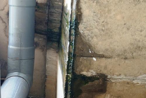 Sáng nay, nước nhỏ giọt ở cầu VD 09B sau trận mưa đêm qua. Ảnh: Phạm Linh.
