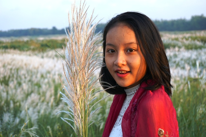 Cánh đồng bạt ngàn cỏ lau trắng giữa sông Trà Khúc