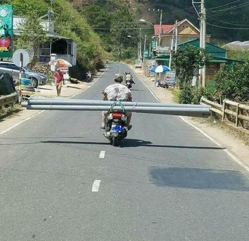 ... phiên bản Việt...