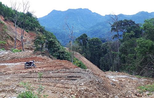 Khu vực xã Trà Mai xây dựng thủy điện Đắk Di 4. Ảnh: Đắc Thành.