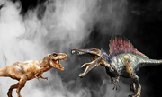 Những loài khủng long chân thú có lực cắn lớn nhất