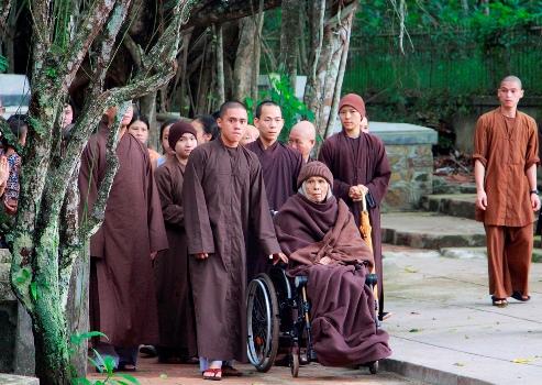 Thiền sư Thích Nhất Hạnh ra ngoài ngắm cảnh chùa Từ Hiếu chiều ngày 11/11. Ảnh: Võ Thạnh