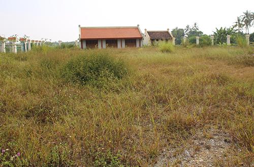 Khuôn viên khu nhà đón tiếp có nơi cỏ tốt cả mét. Ảnh: Nguyễn Hải.