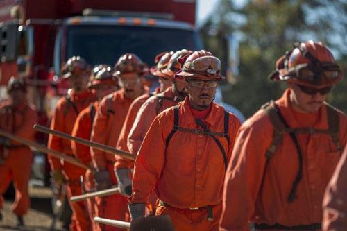 Tù nhân trại Oak Glenlên đường làm nhiệm vụ chữa cháy rừng. Ảnh: AFP.